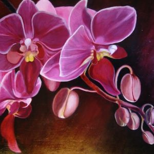 Teresa Winchester - Pink Orchid