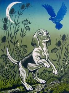 Finding the Bluebird
