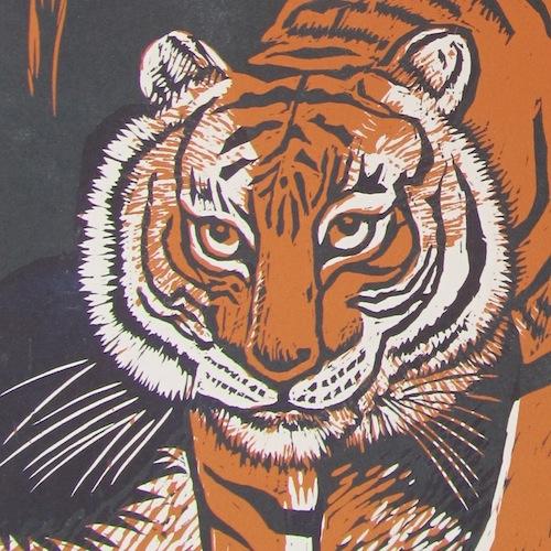 Tigers head