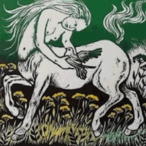 Teresa Winchester - Lady Horse And Bird